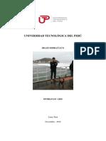 Proyecto de Elevador Hidraulico - Fisica III- Utp -Ingenieria Civil