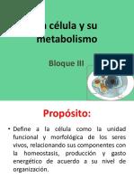 03_La Célula y Su Metabolismo