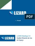 LIZARD Meetings 3.9_v3