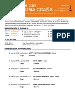 CV.BELTRAN PUMA CCAÑA v1.pdf