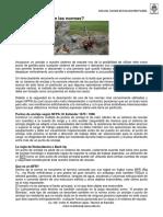 Anclajes. Que dicen las normas.pdf
