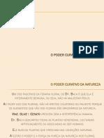 03-O-PODER-CURATIVO-DA-NATUREZA