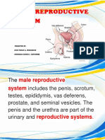 MALE-REPRODUCTIVE-REPORT-Copy