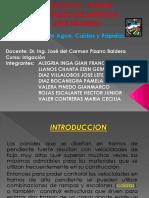 331303711-Saltos-de-Aguas-Caidas-y-Rapidas.pptx