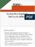 topic 4 SDLC