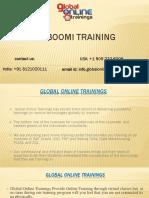 Dell Boomi Training | Dell Boomi Online Training – GOT