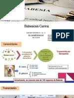 babesia.pdf