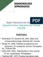REP ENDO TM 2 GNP 2008-09