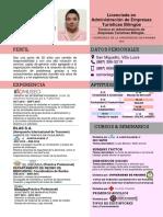 CV - Ejemplo