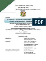Memoire_Master_Ossebi.pdf