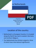 The Netherlands.pptx