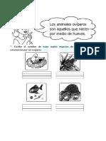 Animales-Oviparos-para-Primaria
