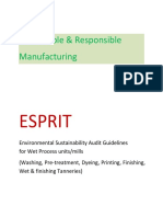 ESPRIT AUDIT GUIDELINES