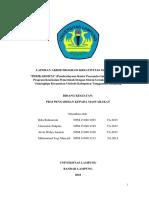 Laporan akhir pdf.pdf