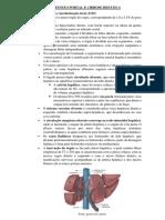 HIPERTENSÃO PORTAL E CIRROSE HEPÁTICA.docx