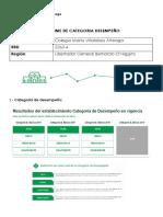 INFORME DE CATEGORIA DESEMPEÑO.docx