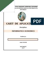 CAIET DE APLICATII  - EXCEL