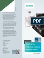 SIE_PaaG_EN.pdf