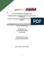 LA_HIDROPONIA_EN_EL_CULTIVO_DE_LA_FRESA.docx