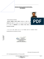 Constancia de evaluacion ocupacional de ingreso.pdf