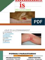 Leishmaniasis PPT