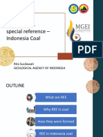 2. Mgei 2019 Ree in Coal