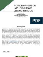 pest identification using matlab.pptx