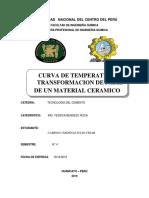 INFORME DE CEMENTO ( CURVA DE TEMPERATURA)