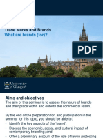 Moodle Slides - Seminar 1 - TMB - What Are Brands For