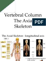 coloana vertebrala,stern, coaste.ppt
