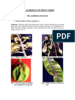 IPM_FRUIT_CROPS_23022015.pdf