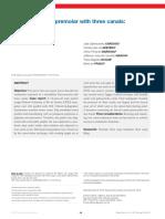 DP_endo_v07n1p014019_en.pdf