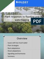 Water Logging Causes