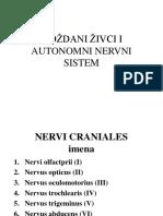 MOZDANI_ZIVCI_I_AUTONOMNI_NERVNI_SISTEM.ppt