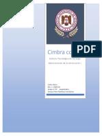 Costo de Cimbra.docx