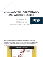 Physiology of Pain Pathways and Who Pain Ladder