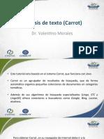 Act 4 - Analisis de Texto Carrot