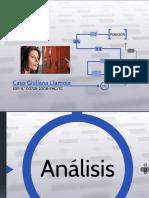 PPT caso Guiliana Llamoja