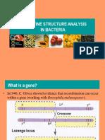 15._Gene_fine_structure_analysis_in_prokaryotes_and_viruses.pptx