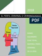 EL PERFIL CRIMINAL