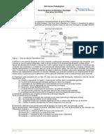 FT_Dezembro.pdf
