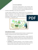 MATERIA Y ENERGÍA EN LOS ECOSISTEMAS 3