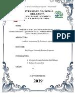 Práctica-Nº10-ANALISIS-INSTRUMENTAL.docx