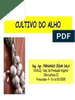 Aula%20de%20ALHO_Horticultura[1].pdf