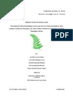 Diversidad de La Flora Pteridologica en Dos Zonas de La Localidad de Altas Cumbres (Cañón de La Peregrina y Ej. Altas Cumbres) Situado en El Municipio de Ciudad, Victoria Tamps.