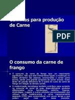 Galinhas Produção Carne, 2006