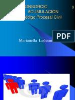 LITISCONSORCIO y ACUMULACION.pptx