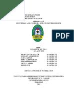 FARMAKOGNOSI AMILUM II.docx