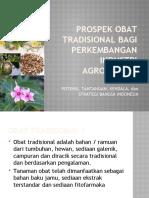Presentasi Kdk Prospek Obat Tradisional