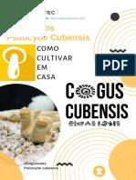 Como-cultivar-cogumelos-magicos-Cultivo-PF-TEC.pdf
